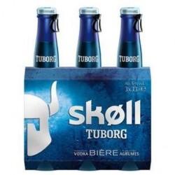 24 Bouteilles de Skoll Bière 6° 24 x 33 CL